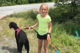 Cô bé 11 tuổi ân cần giúp đỡ 2 người lạ mặt gặp nạn trên đường