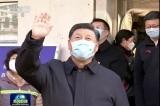 Tập Cận Bình, virus corona, viêm phổi Vũ Hán
