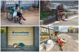 TP.HCM: Đề nghị hỗ trợ người bán vé số, người vô gia cư