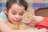 Bé gái viết thư cho chú mèo đã chết và bất ngờ nhận được hồi âm